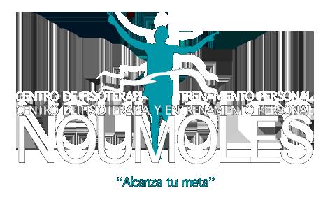 Fisioterapia Noumoles - Fisioterapeutas en Valencia